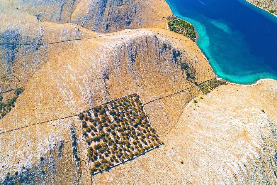 national-park-kornati-drywalls-olive-groves-sailing-protected-bays.jpg
