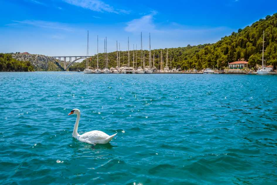 aci-marina-skradin-krka-waterfalls-north-dalmatia-yachts.jpg