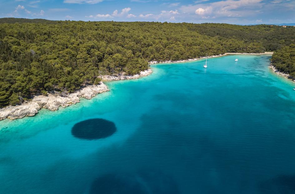 north-adriatic-island-rab-dundo-forest-secret-adriatic.jpg