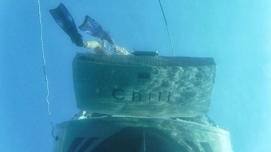 Bavaria Cruiser 33 Chilli